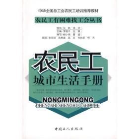 正版 农民工城市生活手册 杨小亮 曹迪写 工人出版社