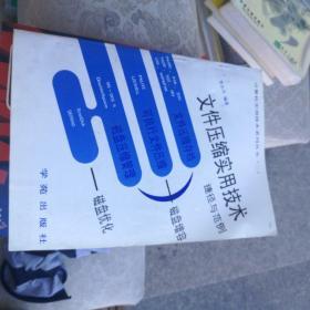 文件压缩实用技术:计算机实用技术系列丛书(二)7507707601李小平编著学苑出版社大16开355页