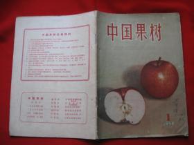 中国果树创刊号
