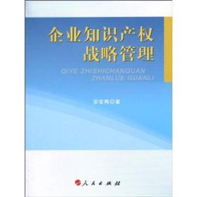 XN-SL企业知识产权战略管理