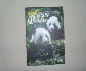 明信片 大熊猫 全套12张 库存品