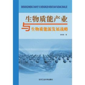 生物质能产业与生物质能源发展战略