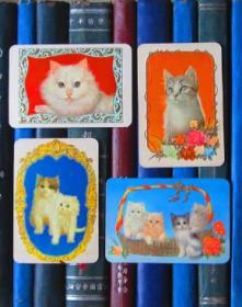 年历片-1978年:猫(中国远洋运输公司天津分公司)【一套四张】