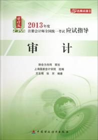 名师点拨系列·2013年度注册会计师全国统一考试应试指导:审计(财经版)
