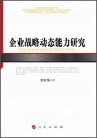 XN-SL企业战略动态能力研究