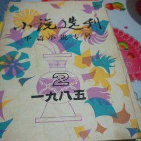 《小说选刊》1985年第二期(内有贾平凹小说落月,正月。)