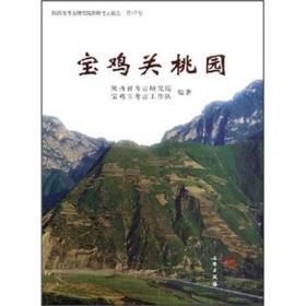 陕西省考古研究院田野考古报告(第47号):宝鸡关桃园