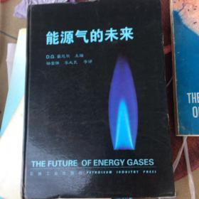能源气的未来