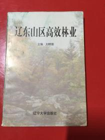 辽东山区高效林业