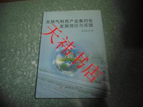天然气利用产业集约化发展理论与实践( 硬精装)
