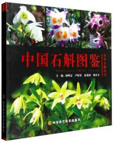 中国石斛图鉴