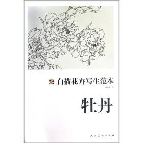 牡丹-白描花卉写生范本