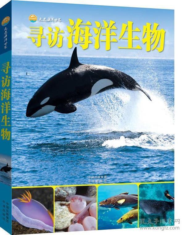 库存新书  *走进海洋世界:寻访海洋生物【*装*】