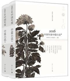 2016中国年度中篇小说(套装上下册)