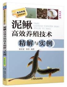 泥鳅高效养殖技术精解与实例