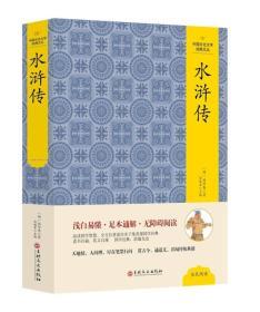 中国文化文学经典文丛 水浒传