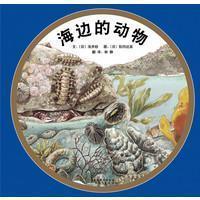 海边的动物:启发精选绘本