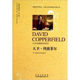 【非二手 按此标题为准】中译经典文库·世界文学名著:大卫·科波菲尔
