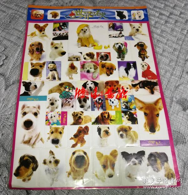 世界名犬 (8开本贴纸、36cm×25cm)