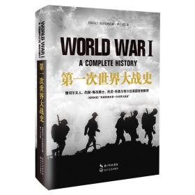第一次世界大战史(精装)