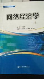 电子商务系列教材:网络经济学