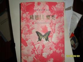 陕西省经济昆虫图志-鳞翅目:蝶类(有彩图)