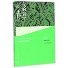 范小青长篇小说系列:我的名字叫王村