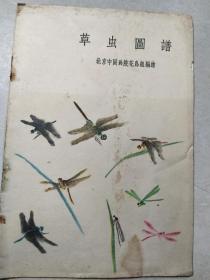 1959年虫草图谱