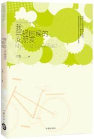 中国当代长篇小说:我年轻时候的女朋友