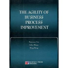 THE AGILITY OF BUSINESS PROCESS IMPROVEMENT