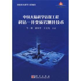 中国大陆科学钻探工程科钻:井变质岩测井技术