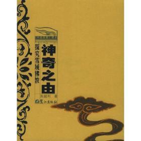 【非二手 按此标题为准】神奇之由:探究雪域佛教——《中国西藏》视点·丛书