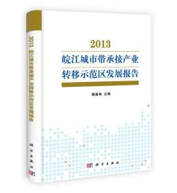 2013皖江城市帶承接產業轉移示范區發展報告