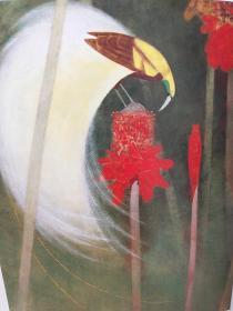 现代日本画全集 卷8单售 上村松篁 日本现代工笔花鸟画代表大师