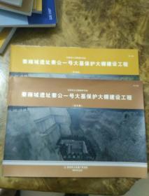 秦雍城遗址秦公一号大墓保护大棚建设工程设计方案