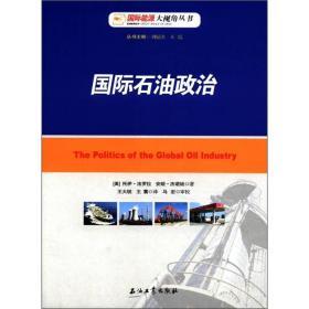 国际能源大视角丛书:国际石油政治