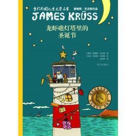 当代外国儿童文学名家詹姆斯·克吕斯作品:龙虾礁灯塔里的圣诞节