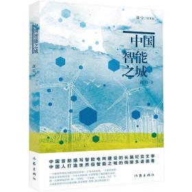 中国智能之城