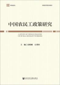 中国农民工政策研究