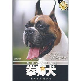 忠心忘我的保镖:拳师犬