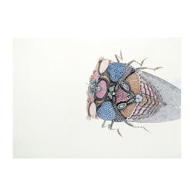大来文化 吴浩 真迹字画 当代水墨大师 知名画家作品 收藏国画宣纸包邮00148