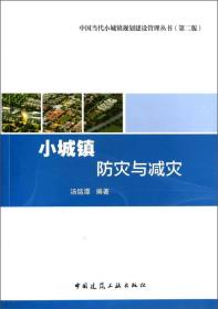 中国当代小城镇规划建设管理丛书:小城镇防灾与减灾(第二版)