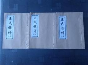 王氏族谱 【汶上 始祖:权祖 1本 卷四】