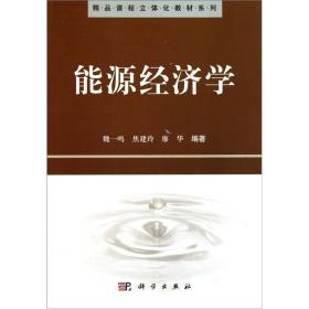 精品课程立体化教材系列:能源经济学