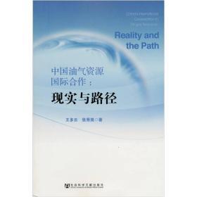 中国油气资源国际合作:现实与路径