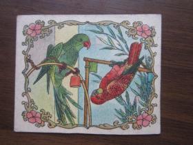 民国或建国初期剪边手工纸玩片——鹦鹉