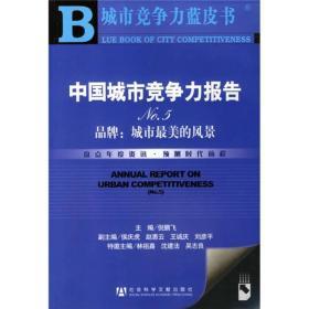 中国城市竞争力报告No.5:城市最美的风景-中国城市竞争力报告