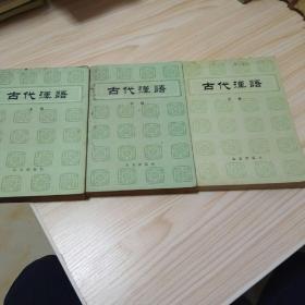 古代汉语(上中 下册)