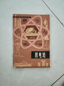 原子能知识丛书核电站