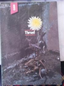 Thrust(英文版)